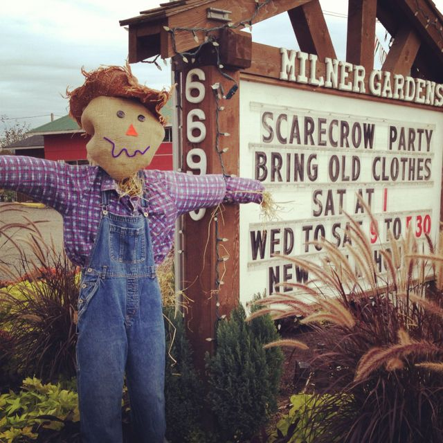 How to host a Scarecrow Party