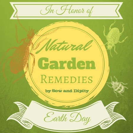 Natural Garden Remedies for Earth Day