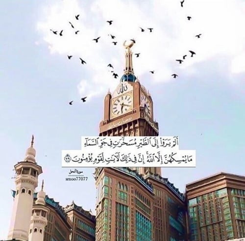 صور اسلامية آيات من القرآن للأنستقرام