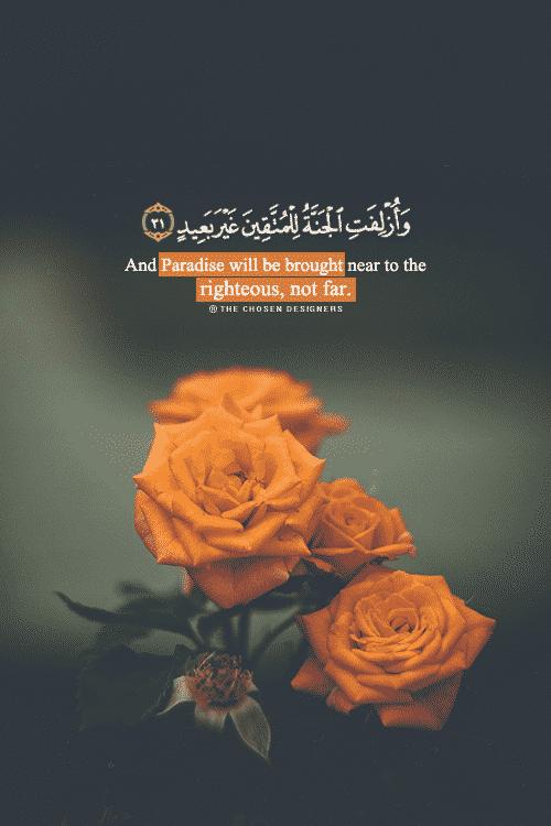 صور اسلامية مكتوب فيها آيات من القرآن جديدة