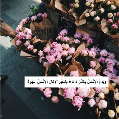 صور مكتوب فيها آيات من القرآن متنوعة