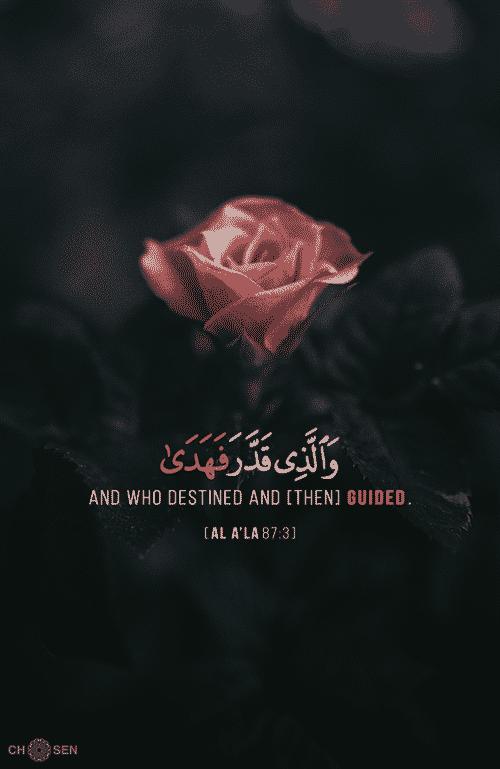 صور منوعة اسلامية مكتوب عليها آيات من القرآن