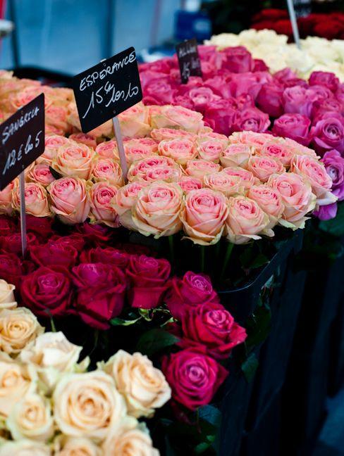 صور جميلة اجمل ورد