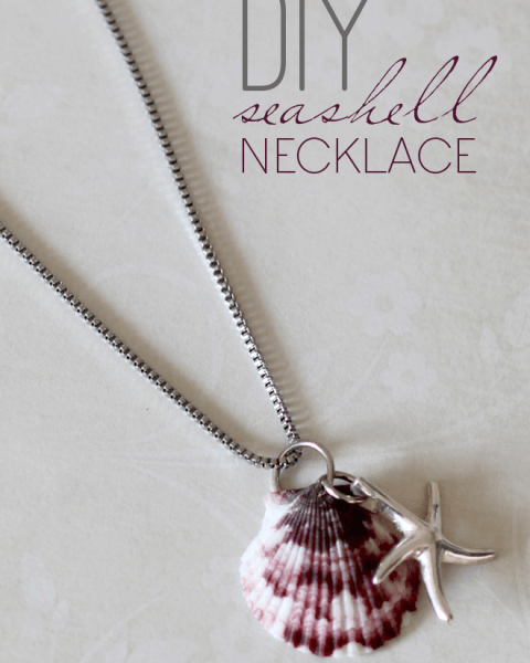 DIY Seashell Necklace