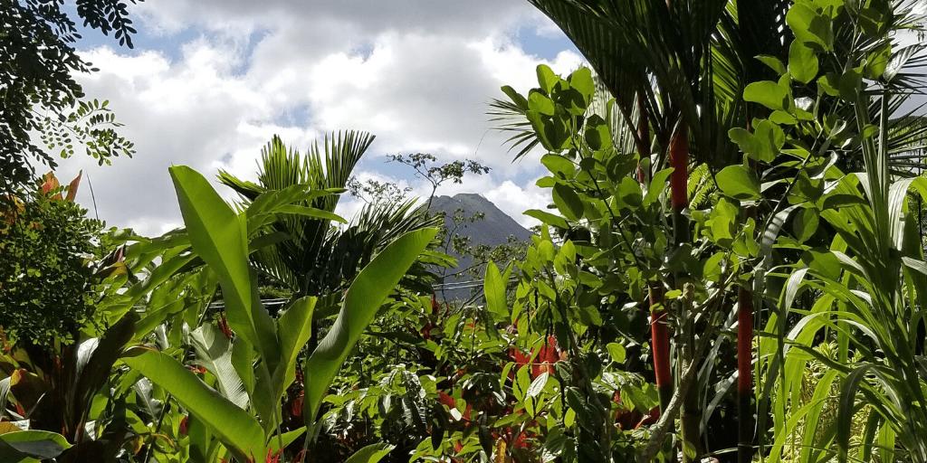 Visit Costa Rica: 4 Tips