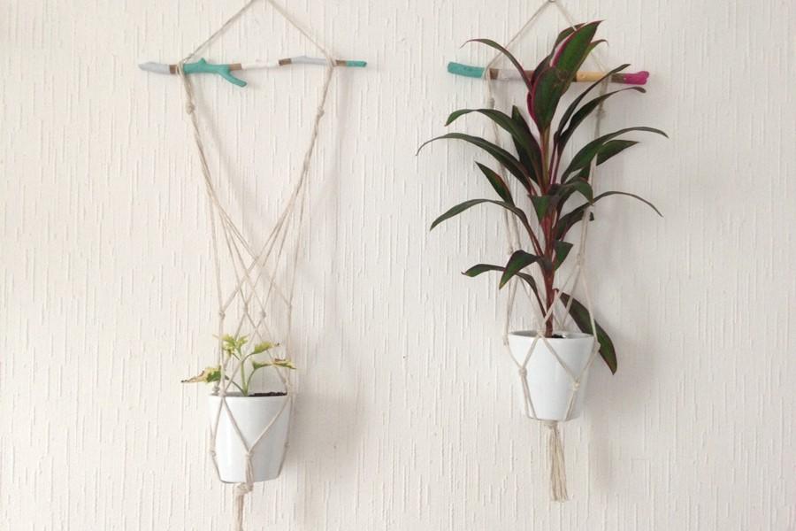 Tendance déco : succombez à la tendance des plantes suspendues