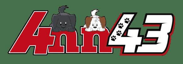 logo anna43 chibi