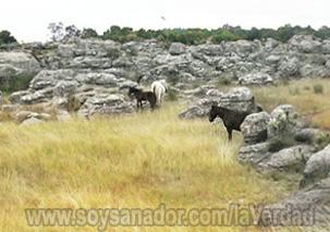 Stone Circles, Tellinger, Oro Monoatómico, ormes, mpumalanga, adam´s calendar, anunnakis