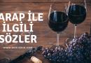 Şarap Sözleri