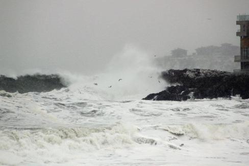 Да му мисли, който е на 1-ва линия от морето; снимка: Светлана Бондаренко