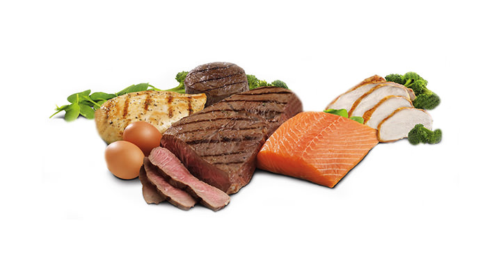 Is the Vegetable fat is better than animal fat? Food myths, SIS Spa in Spain