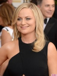Amy Poehler Golden Globes 2014