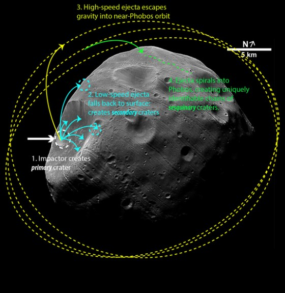 This image shows the sequence of events that create chains of craters on the Martian moon Phobos after an impactor strikes. (Orbital illustrations not drawn to scale)