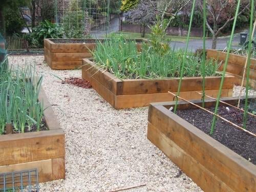 Raised Garden Beds Photos And Ideas