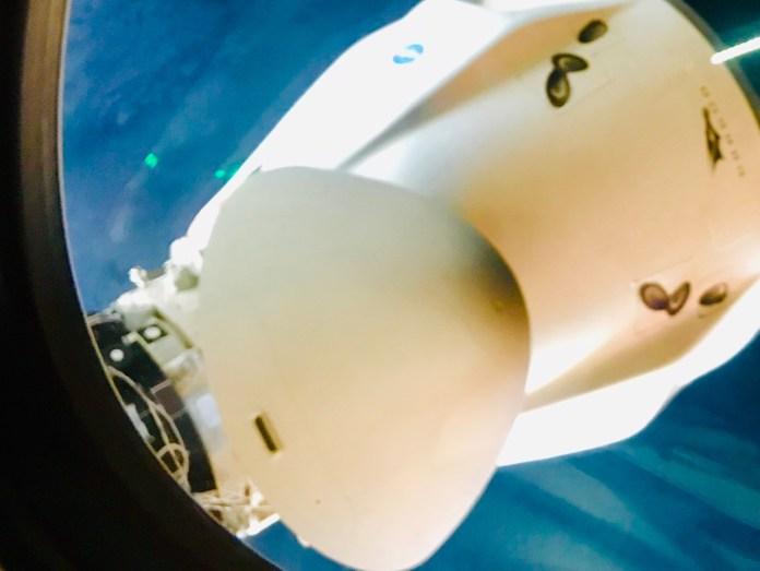ISS के साथ डॉकिंग के बाद SpaceX का क्रू -2 ड्रैगन मोमेंट्स।  इस चित्र को क्रू -1 ड्रैगन में सवार जापानी अंतरिक्ष यात्री सोइची नोगुची ने पकड़ा था, जिसे पास के बंदरगाह पर डॉक किया गया था।  साभार: सोइची नोगुची / JAXA