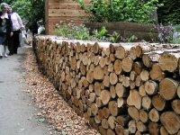 Gallery: The RSPB/SITA Real Rubbish Garden: Log Pile Wall