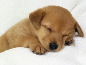 OMG so tired...