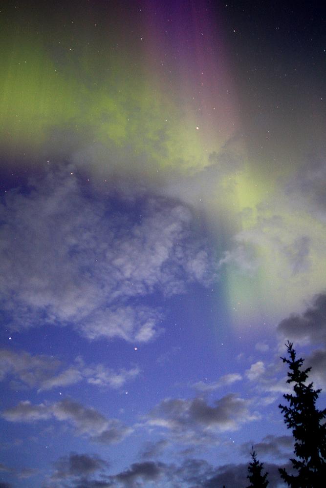 Northern Lights Mn Tonight