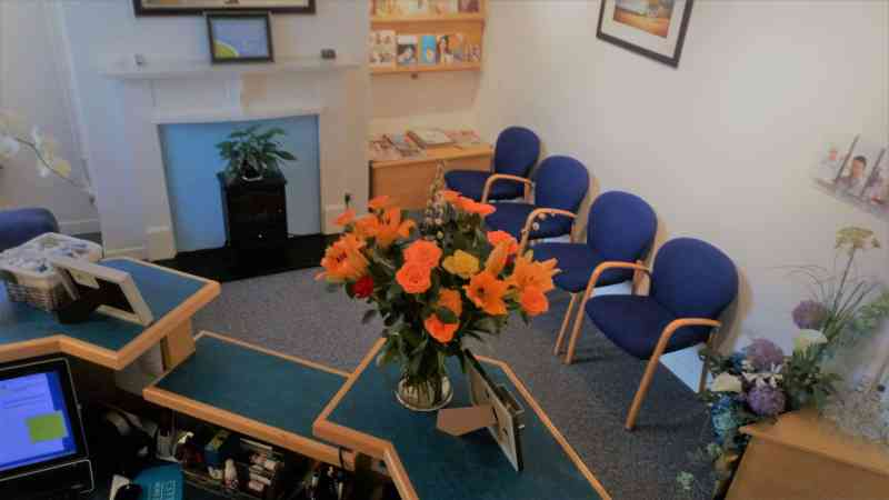 view of SpaDental Glastonbury dentist reception room with orange flowers