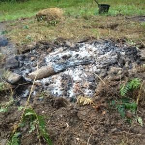 biochar fire finished