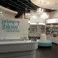 Primp and Blow Scottsdale