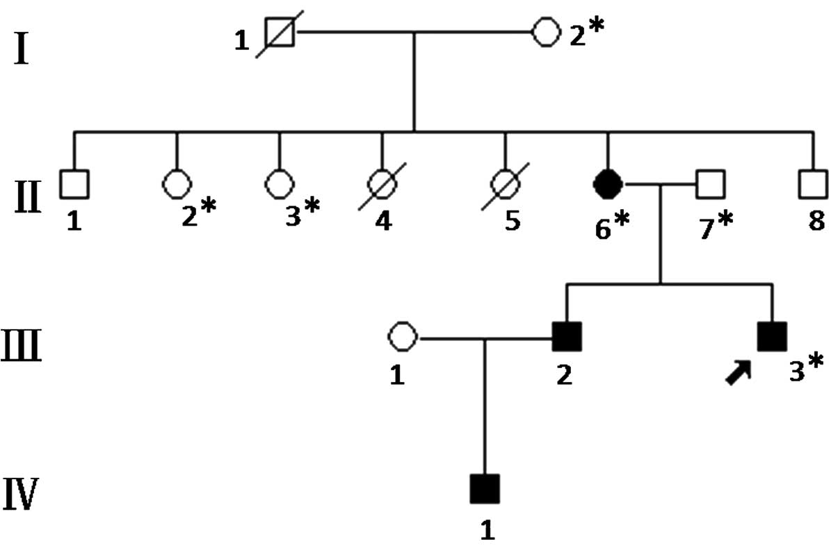 Novel Keratin 5 Mutation In A Family With Epidermolysis Bullosa Simplex