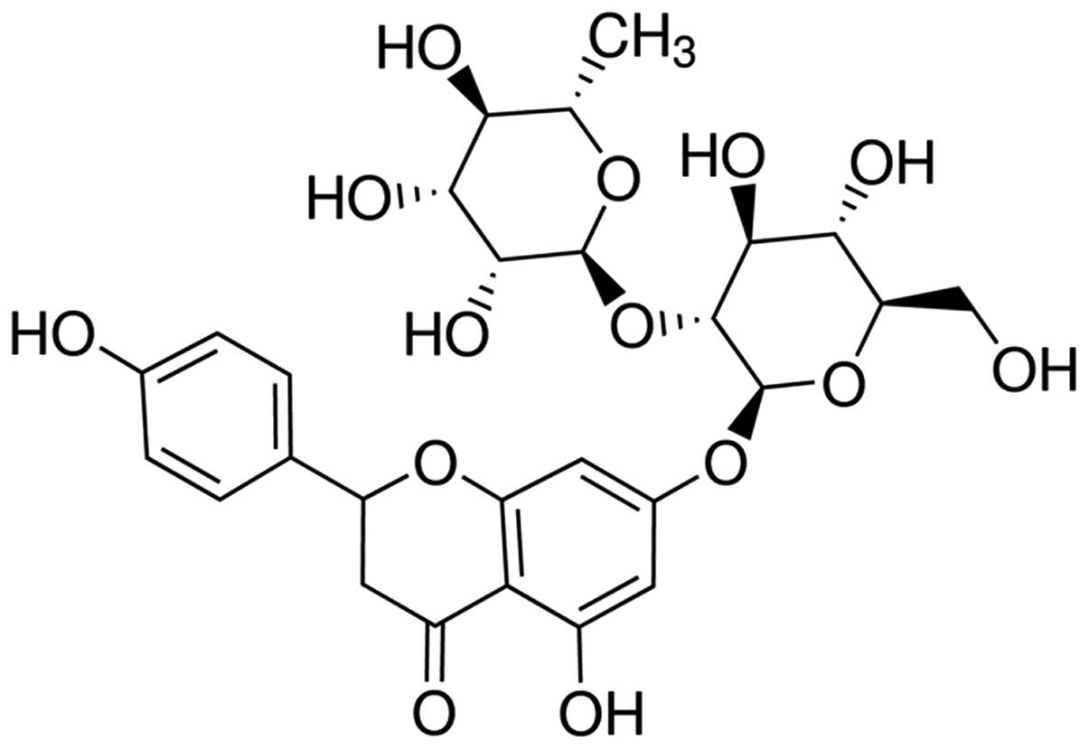 Protective effect of naringin against ankylosing