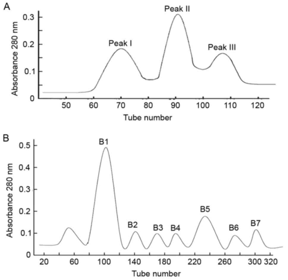 hight resolution of isolation purification and identification of scorpion venom a three protein peaks were identified in the scorpion venom crude extract peaks i ii