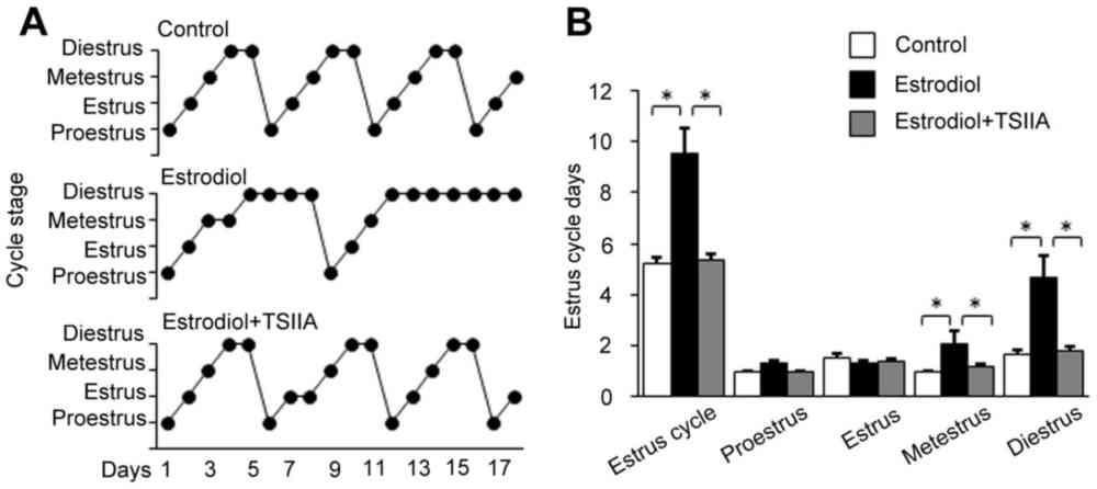 medium resolution of effect of tsiia on the disorder of the estrus cycle a estrus cycles of female mice were determined via toluidine blue staining of fluid obtained from