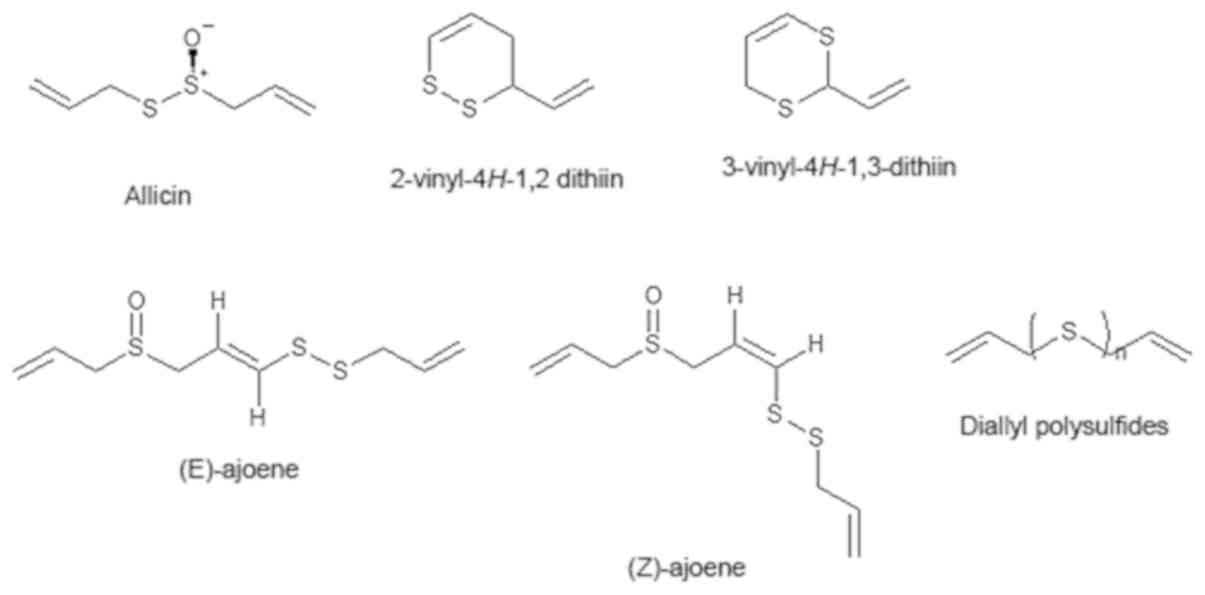 Antimicrobial properties of hydrophobic compounds in