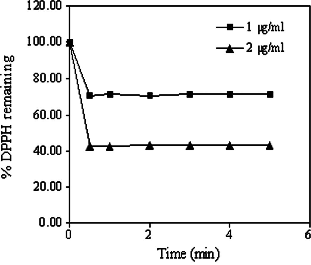 Antioxidant Activity And Antiapoptotic Effect Of Asparagus Racemosus Root Extracts In Human Lung