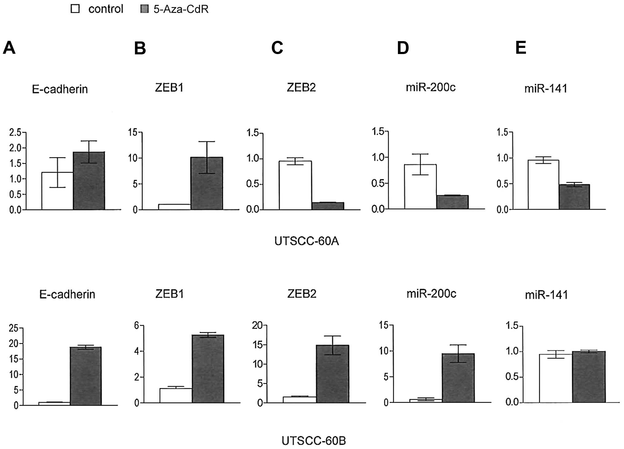 Role of miR-200c/miR-141 in the regulation of epithelial