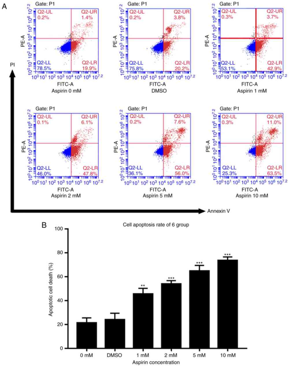 medium resolution of  a cells were exposed to various concentrations of aspirin for 24 h and then harvested for apoptosis analysis via flow cytometry and annexin v fitc pi