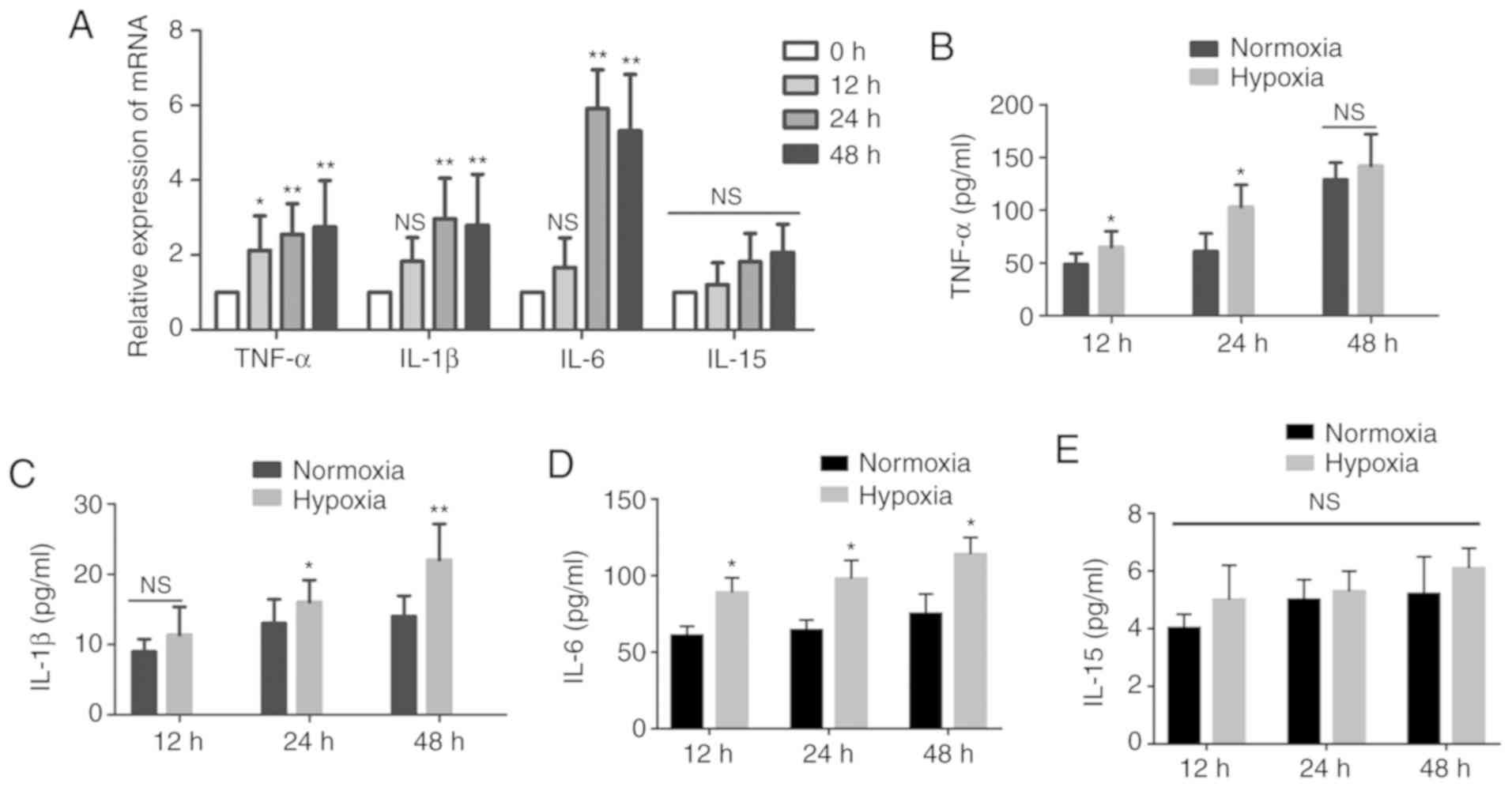 Hypoxic mast cells accelerate the proliferation, collagen
