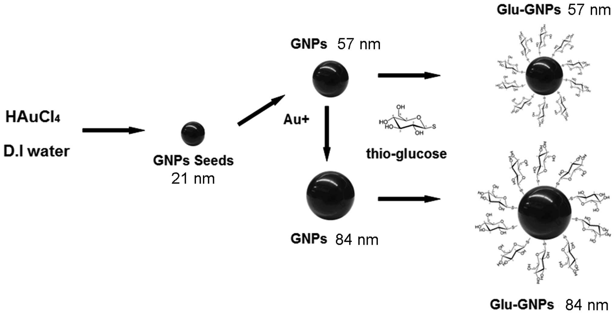 Smart Gold Nanoparticles Enhance Killing Effect On Cancer