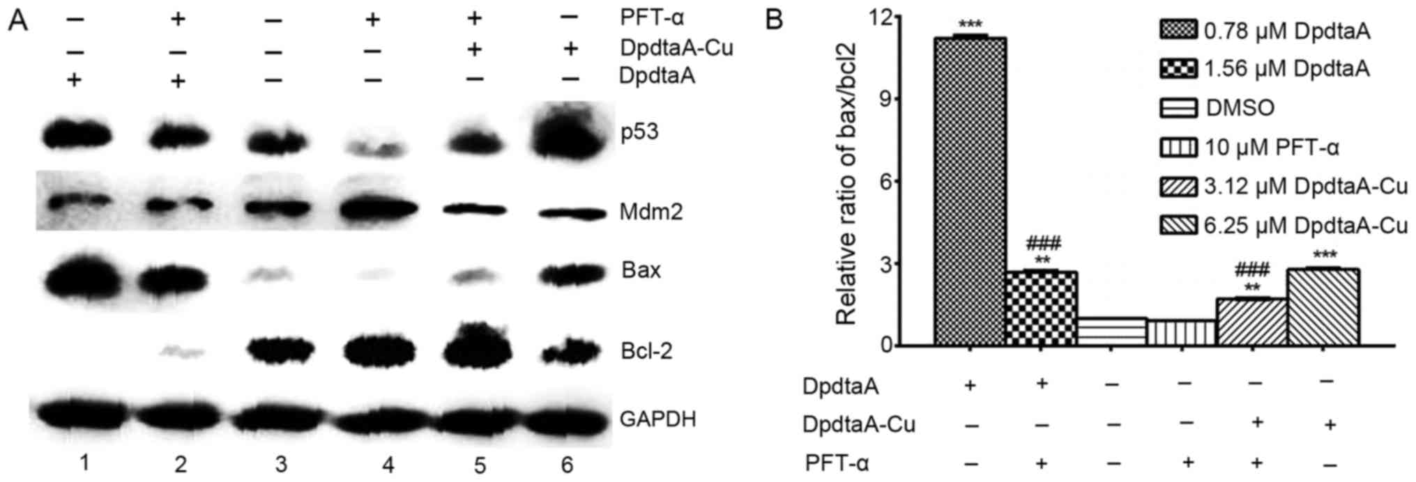 Antiproliferative activity of di-2-pyridylhydrazone