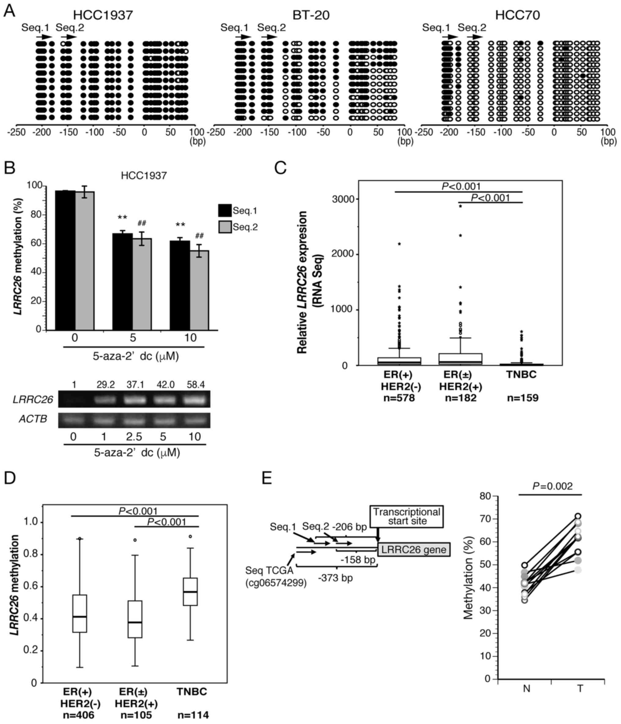 Frequent Downregulation Of Lrrc26 By Epigenetic