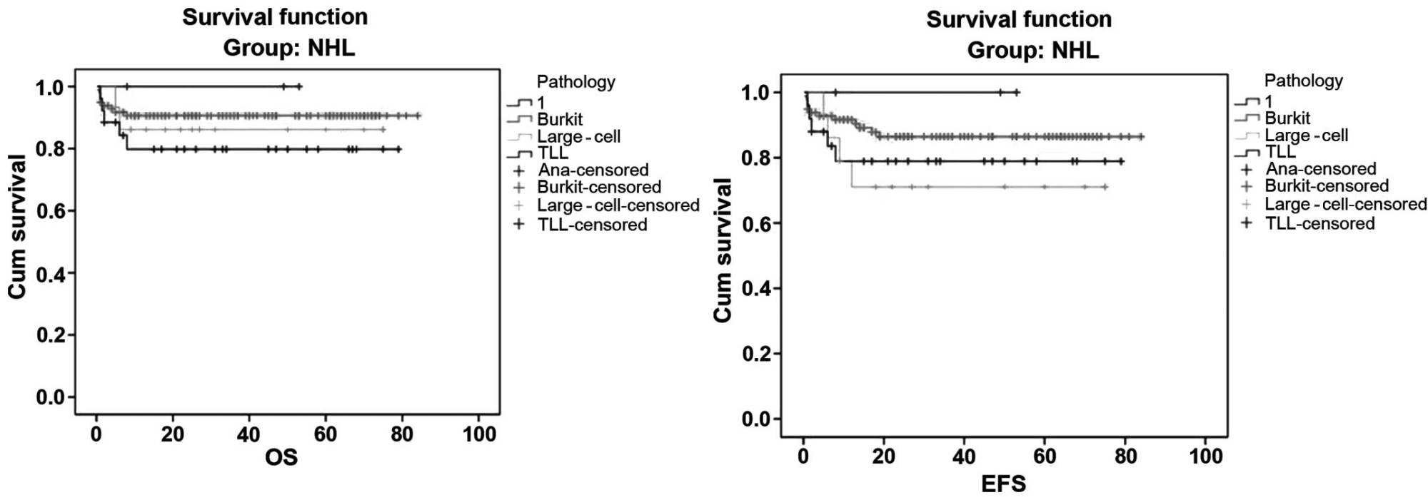 hight resolution of five year overall survival os and event free survival efs of non hodgkin lymphoma nhl according to pathological subtypes tll t cell lymphoblastic