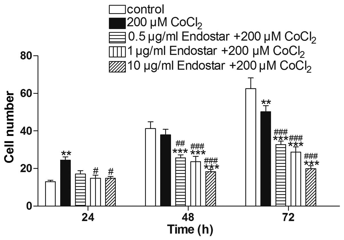 Endostar Inhibits Hypoxia Induced Cell Proliferation And Migration Via The Hypoxia Inducible