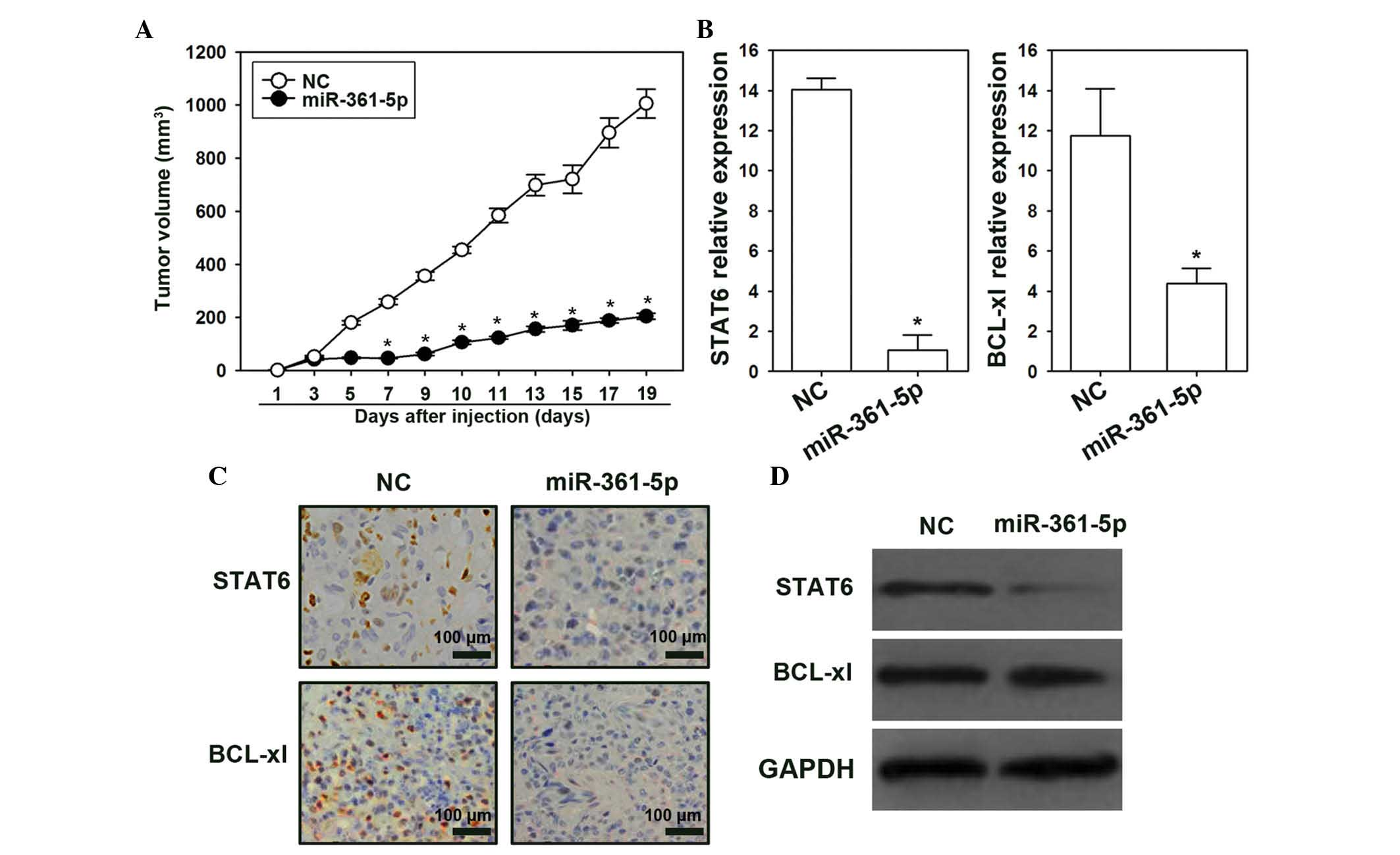 MicroRNA‑361‑5p suppresses cancer progression by targeting