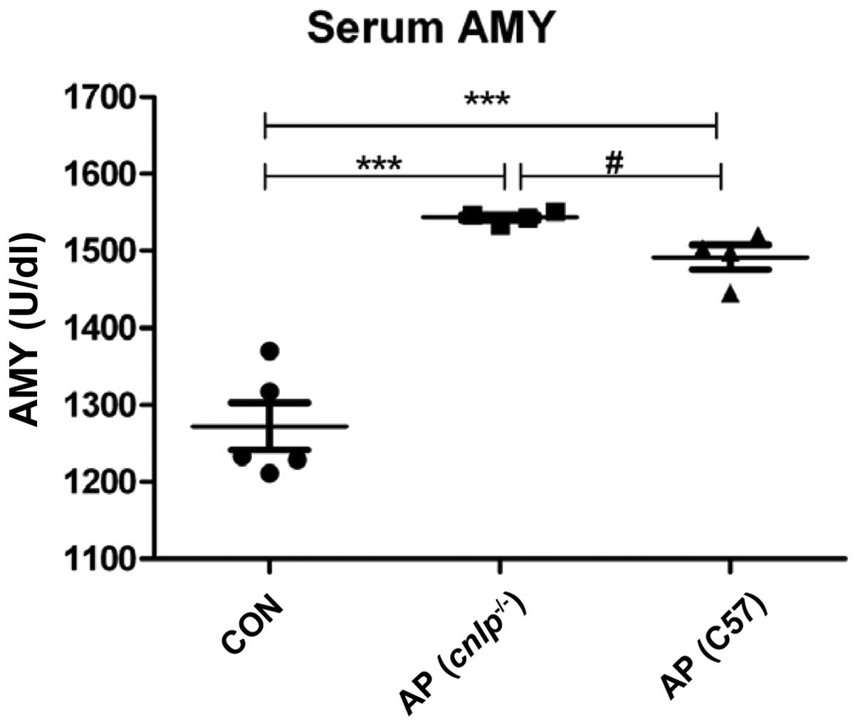 hight resolution of figure 1 effects of cathelicidin related antimicrobial peptide deficiency cnlp on serum amylase amy levels data are presented as the mean