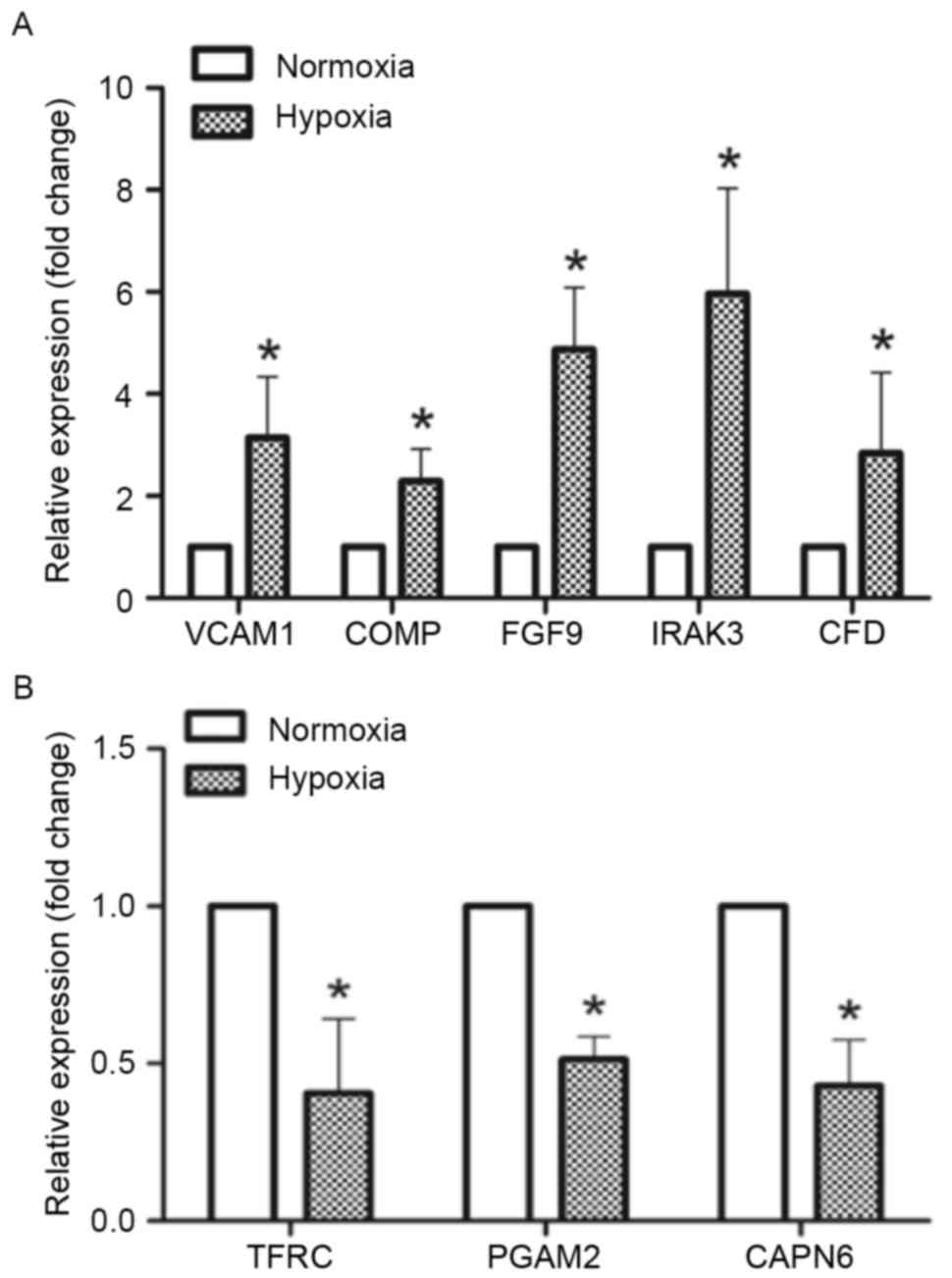 General regulatory effects of hypoxia on human cartilage