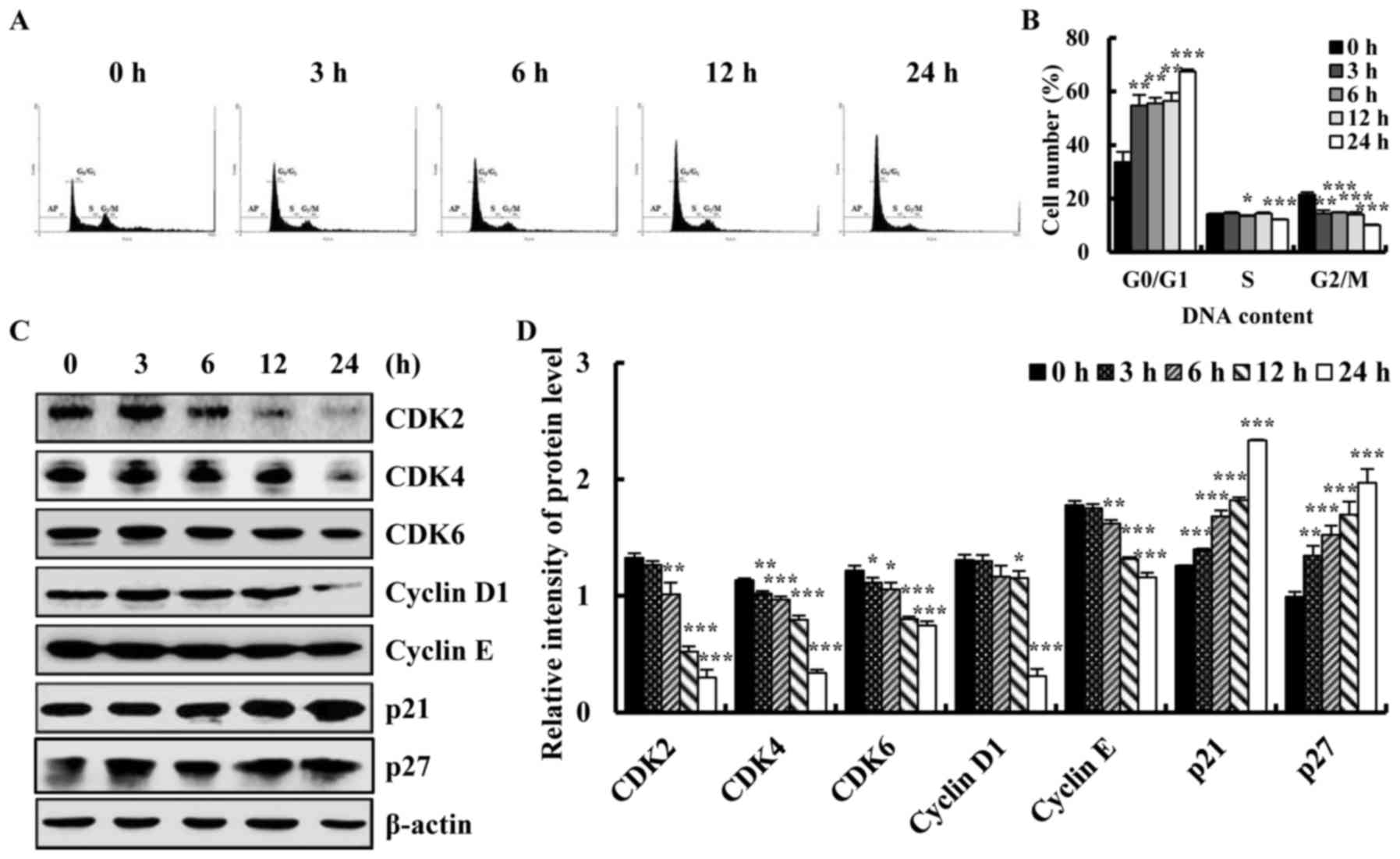 Quinalizarin Exerts An Anti Tumour Effect On Lung Cancer A549 Cells By Modulating The Akt Mapk