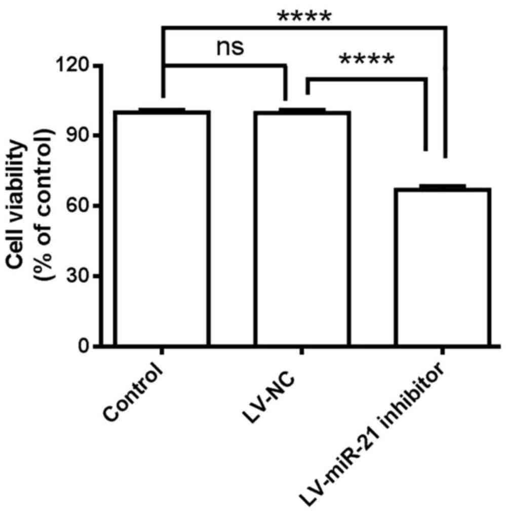 medium resolution of downregulation of microrna u201121 expression inhibits proliferation and rh spandidos publications com single line electrical diagram