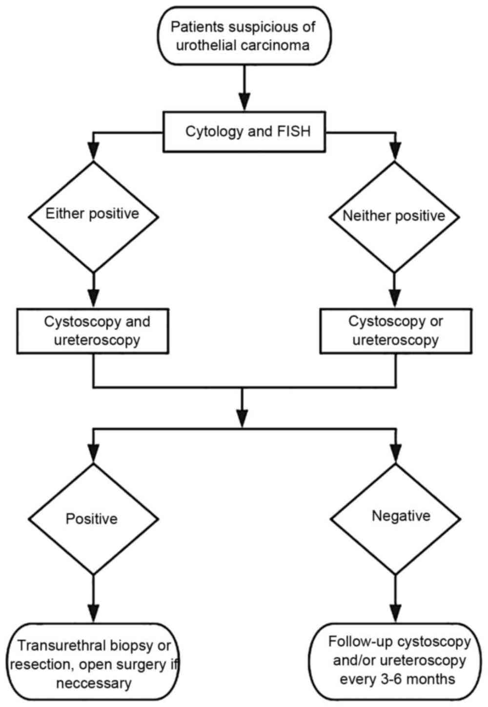 medium resolution of flow diagram demonstrating the diagnostic procedures in the present study fish fluorescence in situ hybridization