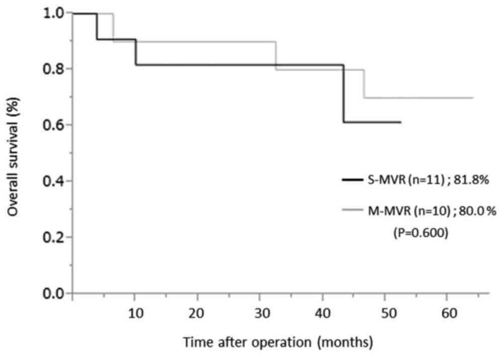 medium resolution of kaplan meier analysis of overall survival at 3 years for pathological stage ii or iii patients between the s mvr and m mvr group p 0 600