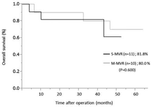 small resolution of kaplan meier analysis of overall survival at 3 years for pathological stage ii or iii patients between the s mvr and m mvr group p 0 600