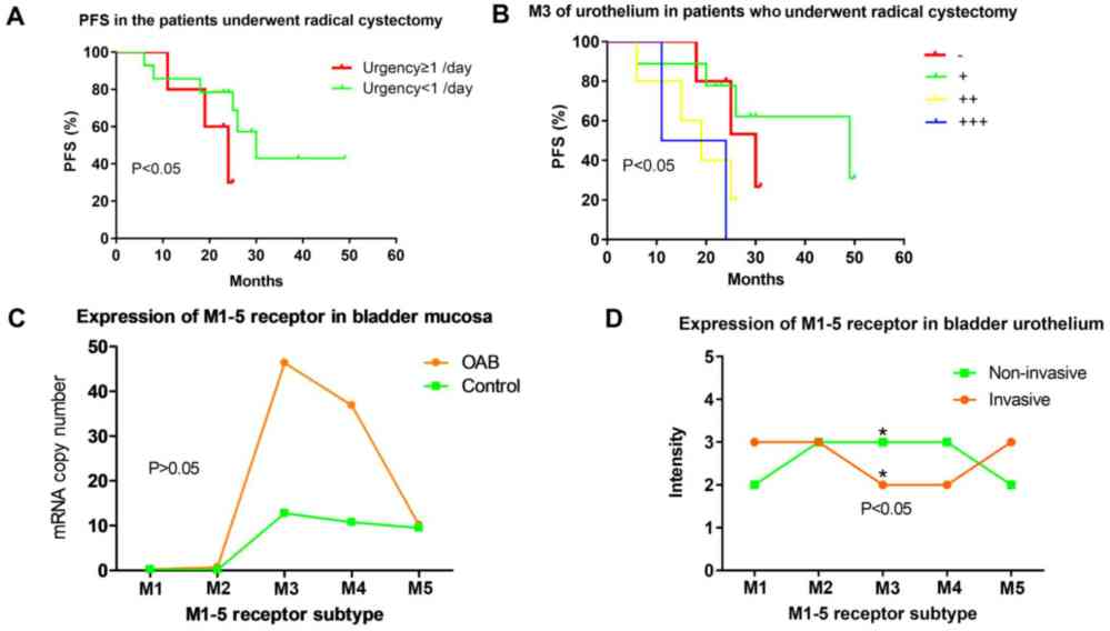 medium resolution of  c expression levels of machrs m1 5r in bladder mucosa of patients with oab based on reverse transcription polymerase chain reaction oab group m1 5