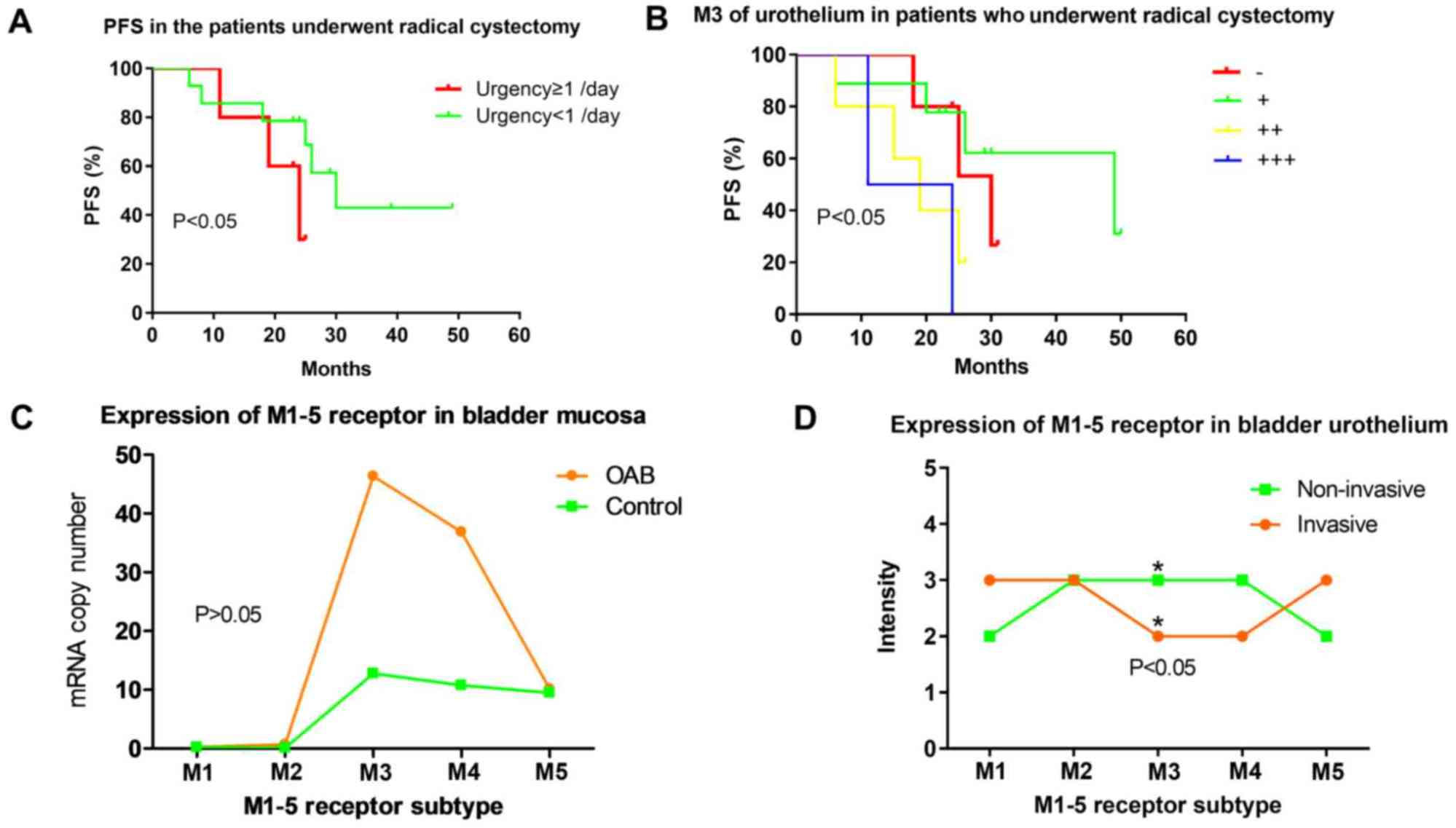hight resolution of  c expression levels of machrs m1 5r in bladder mucosa of patients with oab based on reverse transcription polymerase chain reaction oab group m1 5