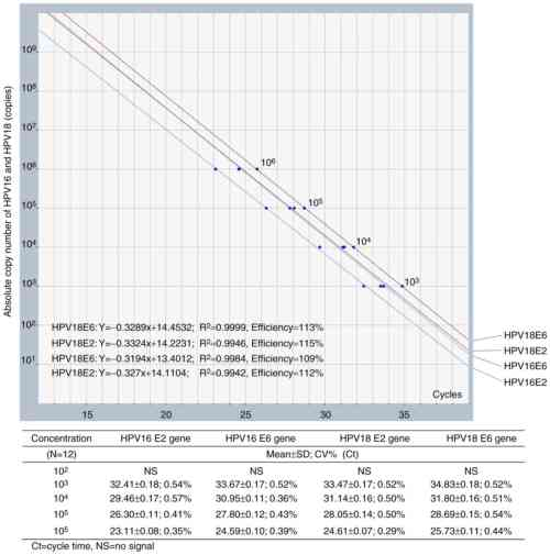small resolution of figure 1 standard curves of multiplex quantitative polymerase chain reaction for e2 and e6 genes of hpv16 and hpv18 the analytical range was revealed to